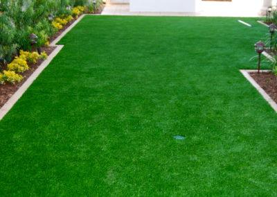 romani-monrovia-grass